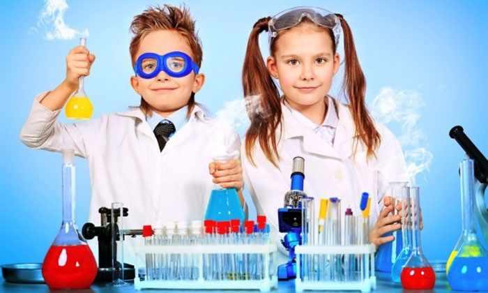 Курсы ментальной арифметики или мегаскорочтения заполнят пробелы школьного образования.